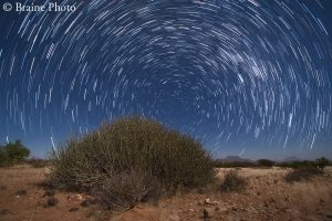 The Namib Desert offers the perfect settings for photographing star-trails and nightscapes. With no light pollution, Namibian skies offer the best stargazing opportunities in the world