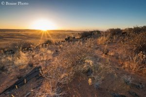 Sunset over the rolling landscape of the Huab valley in Damaraland, Namibia, home to so many desert-adapted mammals, birds, reptiles and plants.
